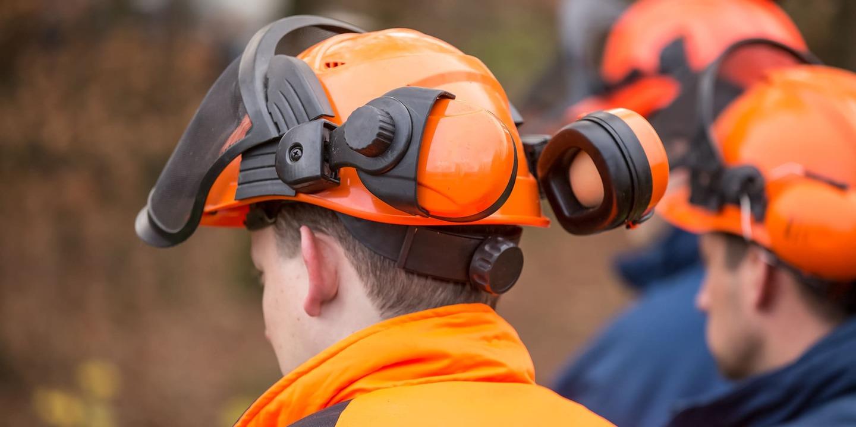 AFB fait ses propositions au ministre Dufour - Alliance Forêt Boréale